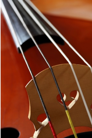 How to Clean Double Bass